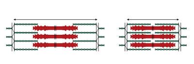 Na contração do músculo estriado esquelético, ocorre a sobreposição dos filamentos de actina e miosina