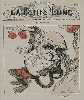 Charge de Charles Darwin como um macaco, em capa da revista satírica La Petite Lune