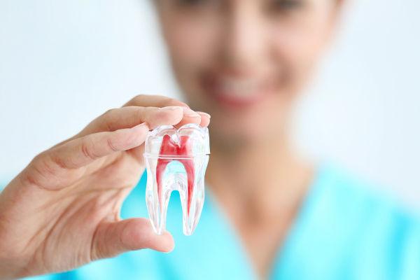O cirurgião-dentista pode especializar-se em diferentes áreas.