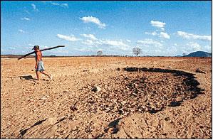 Aspecto de uma área desertificada