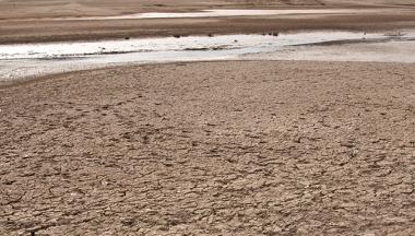 Exemplo de solo em processo de desertificação