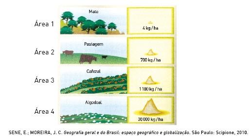 Comparação da erosão do solo em diferentes áreas ao longo do ano