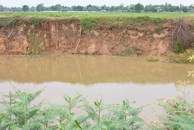 A ausência das florestas pode intensificar a erosão da margem dos rios