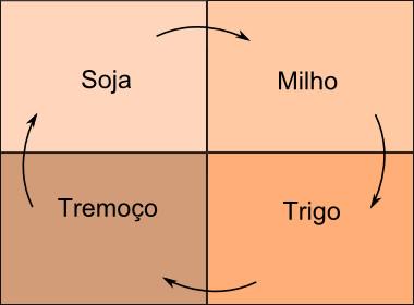 Esquema ilustrativo de um sistema de rotação de culturas