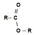Fórmula geral de um éster