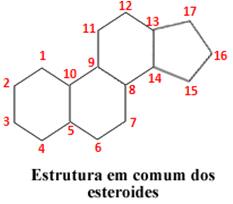 Estrutura comum aos esteroides