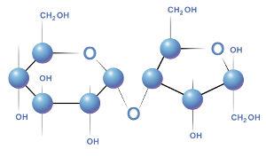Fórmula estrutural de uma molécula de sacarose