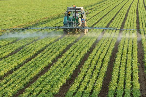As técnicas aplicadas à agricultura, como a utilização de agrotóxicos, podem causar impactos ao meio ambiente