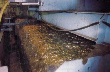 Flotação industrial de minérios de sulfato de cobre