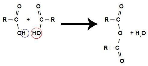 Equação de formação de um anidrido