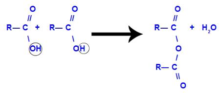 Anidrido de ácido carboxílico originado a partir da desidratação entre dois ácidos carboxílicos
