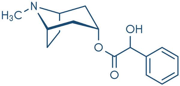 Atropina é um alcaloide tóxico extraído da planta denominada Atropa belladonna.