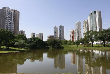 Goiânia: exemplo de metrópole regional