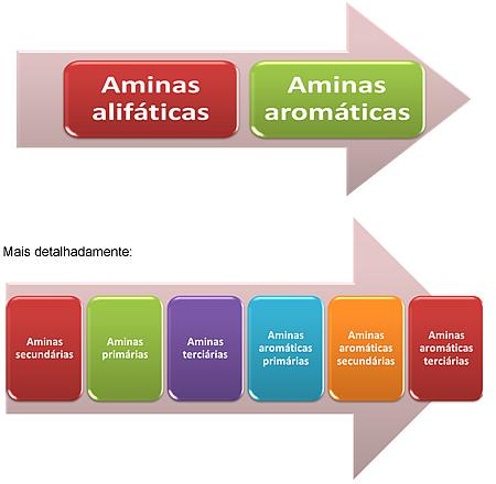 Ordem decrescente do grau de basicidade das aminas