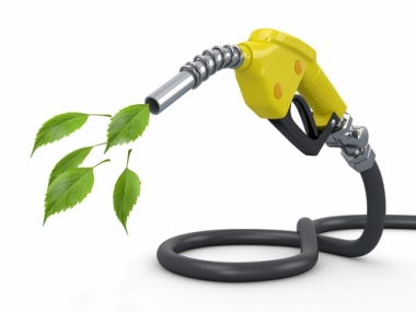 O biodiesel apresenta vantagens econômicas e ambientais