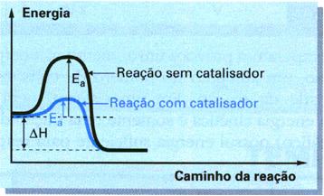 O catalisador diminui a energia de ativação