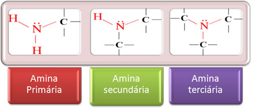 Classificação dos tipos de aminas