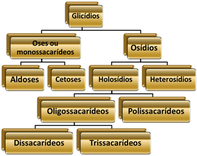 Esquema de classificação dos glicídios.