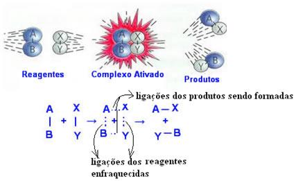 Esquema de formação do complexo ativado