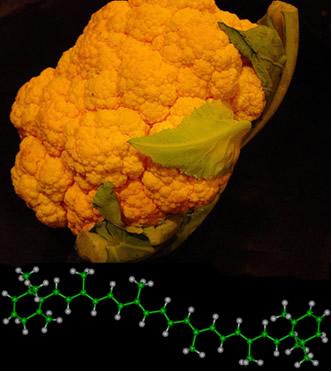Couve-flor alaranjada por excesso de betacaroteno