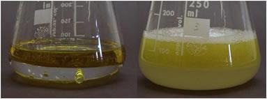 Formação de uma emulsão depois de se bater água e óleo no liquidificador.