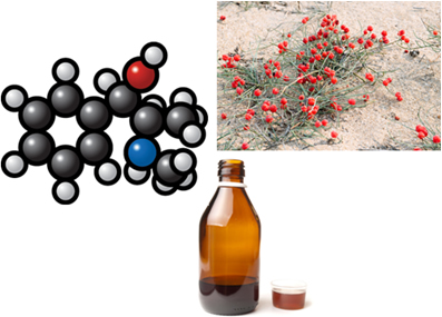 Fórmula da ephedrina, planta Ephedra sinica e descongestionante