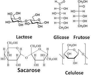Carboidratos Ou Glicídios Carboidratos Em Nosso Organismo