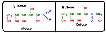 Fórmulas químicas da glicose e da frutose, que são, respectivamente, aldose e cetose.