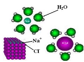 Atração entre polos positivos e negativos das moléculas de água e dos íons do cloreto de sódio