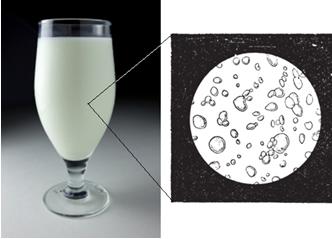 Visão do leite com microscópio