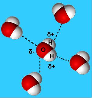 Ligações de hidrogênio na água