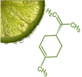 O limoneno é um terpeno encontrado na casca do limão