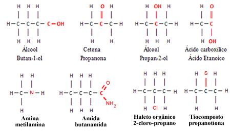 Exemplos de moléculas polares