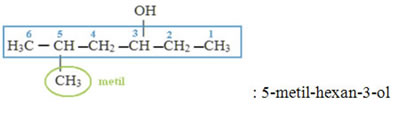 Exemplo de monoálcool com uma ramificação