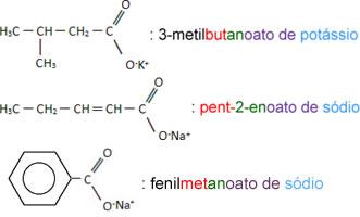 Nomenclatura de sais orgânicos ramificados e com insaturações