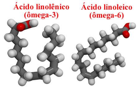 Estruturas dos ácidos linolênico e linoleico, que são, respectivamente, o ômega-3 e ômega-6