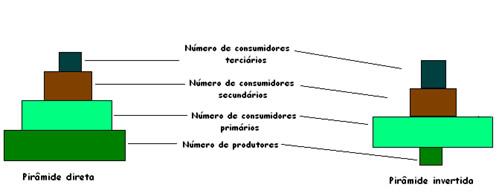 Exemplo de pirâmide de números direta e invertida