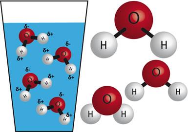 A polaridade da água pode definir se o composto orgânico irá se dissolver nela ou não