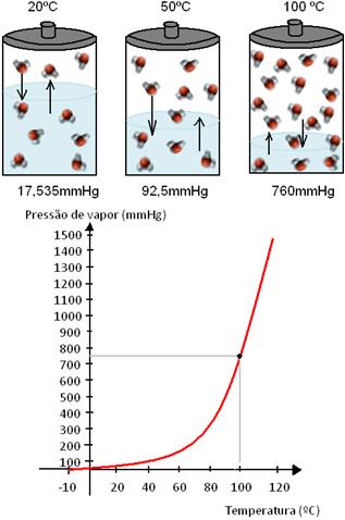 Modelo e gráfico de pressão de vapor da água em três temperaturas diferentes