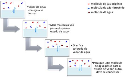 Esquema de pressão de vapor da água em recipiente fechado