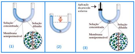 Esquema de pressão osmótica em soluções de concentrações diferentes