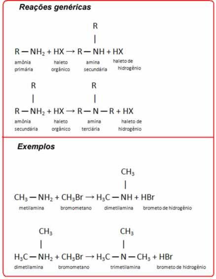 Método de obtenção de amina por reação de haletos orgânicos com amônia