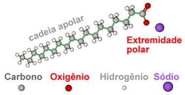 Exemplo de sal orgânico com cadeia apolar e extremidade polar