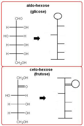 Simplificação das fórmulas estruturais de duas oses: a glicose e a frutose.