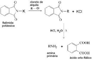 Síntese de Gabriel para obtenção de amina primária