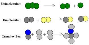 Exemplos de tipos de molecularidade