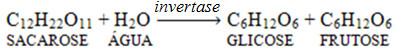 Atuação da enzima invertase como catalisadora da reação de hidrólise da sacarose