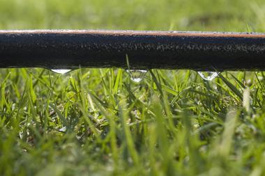 Na irrigação por gotejamento, a perda da água por evaporação é minimizada