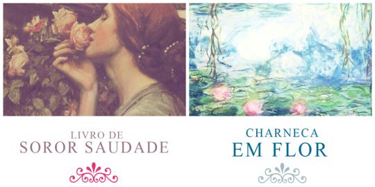Livro de Sóror Saudade e Charneca em Flor, esse último publicado postumamente, estão entre os livros mais conhecidos de Florbela Espanca