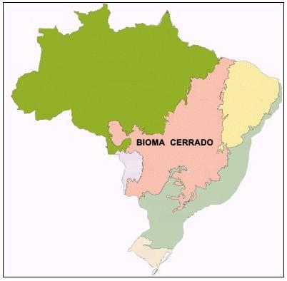 O Cerrado localiza-se na porção central do Brasil, abrangendo vários estados brasileiros.
